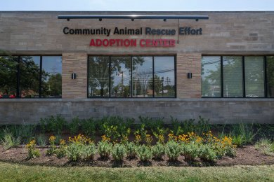 Community Animal Rescue Effort Adoption Center Commercial Construction. America's Custom Home Builders